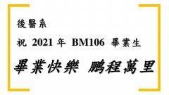 BM106.jpg